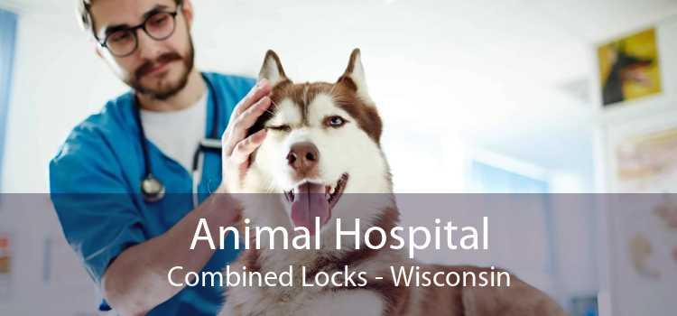 Animal Hospital Combined Locks - Wisconsin
