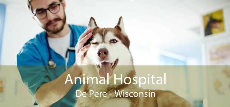 Animal Hospital De Pere - Wisconsin