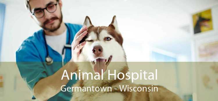 Animal Hospital Germantown - Wisconsin