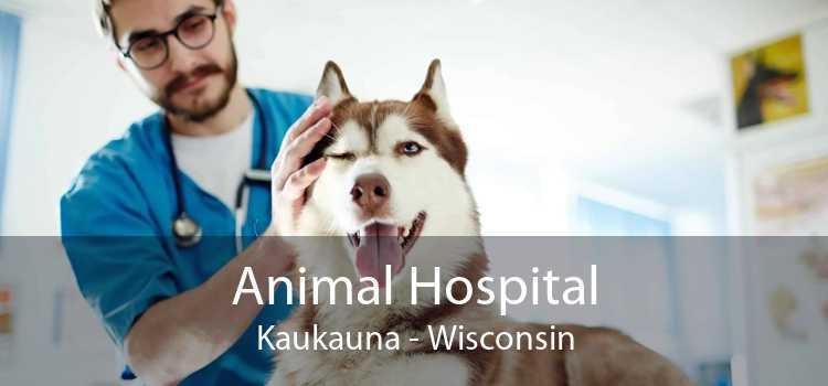Animal Hospital Kaukauna - Wisconsin