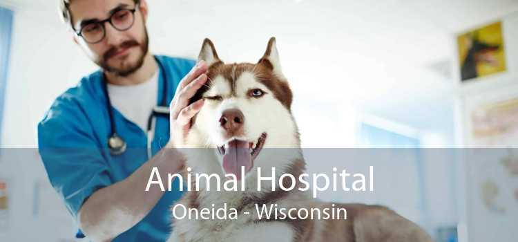 Animal Hospital Oneida - Wisconsin