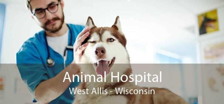 Animal Hospital West Allis - Wisconsin