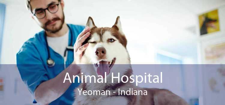 Animal Hospital Yeoman - Indiana