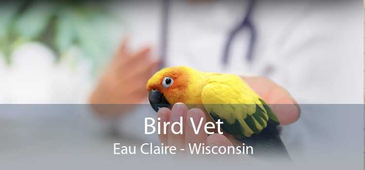 Bird Vet Eau Claire - Wisconsin