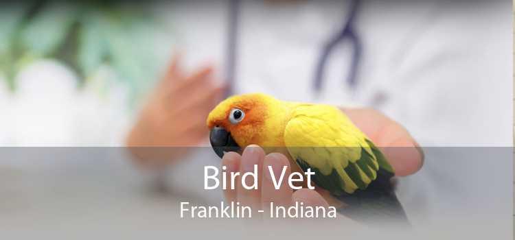 Bird Vet Franklin - Indiana