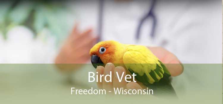 Bird Vet Freedom - Wisconsin