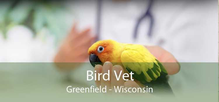Bird Vet Greenfield - Wisconsin