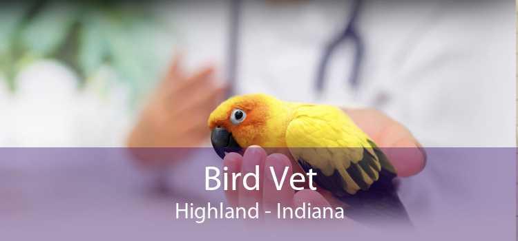 Bird Vet Highland - Indiana