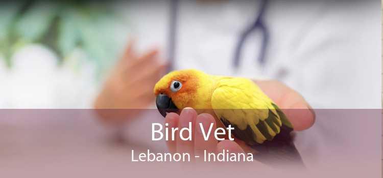 Bird Vet Lebanon - Indiana