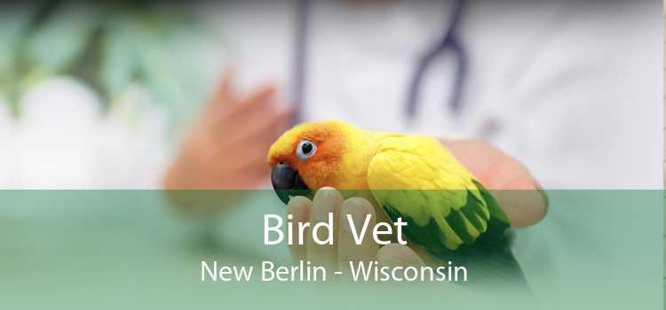 Bird Vet New Berlin - Wisconsin