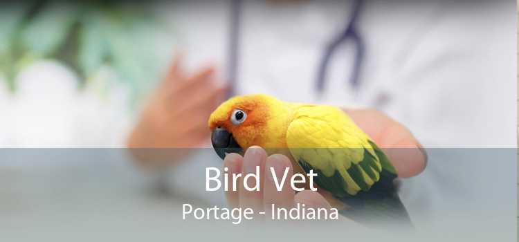 Bird Vet Portage - Indiana
