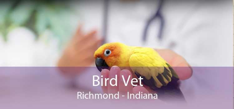 Bird Vet Richmond - Indiana