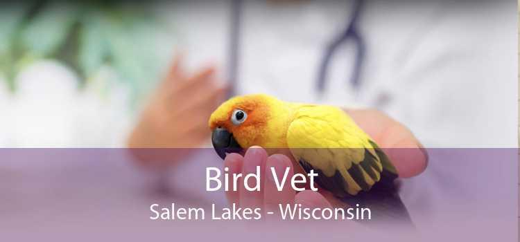 Bird Vet Salem Lakes - Wisconsin