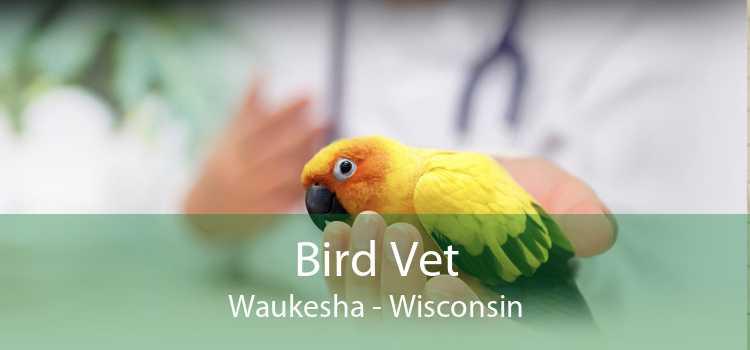 Bird Vet Waukesha - Wisconsin