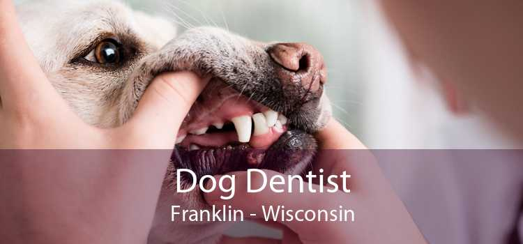 Dog Dentist Franklin - Wisconsin