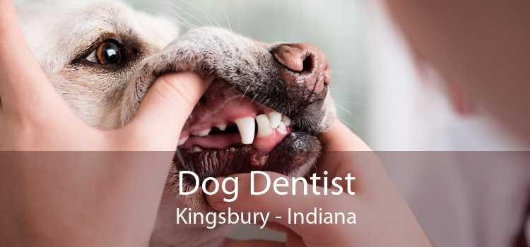 Dog Dentist Kingsbury - Indiana