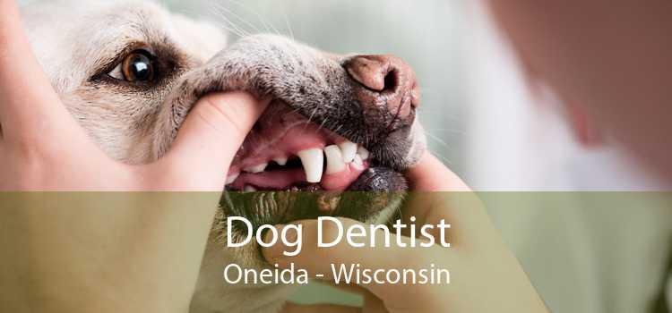 Dog Dentist Oneida - Wisconsin