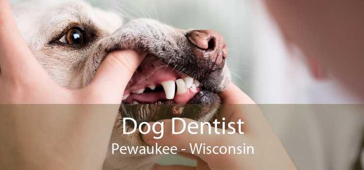 Dog Dentist Pewaukee - Wisconsin