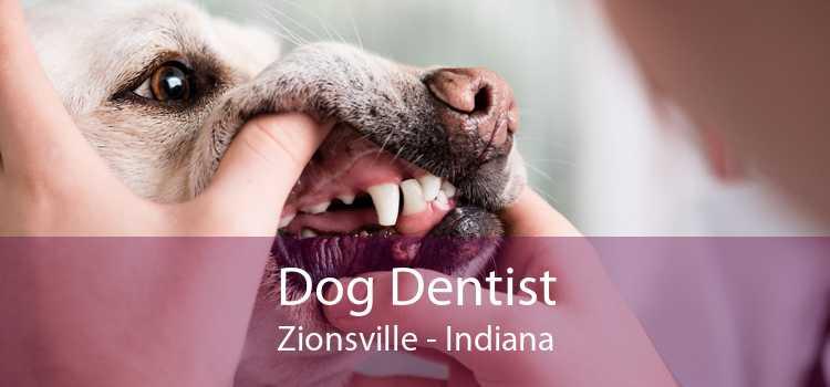 Dog Dentist Zionsville - Indiana