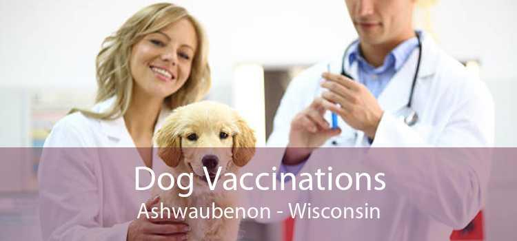 Dog Vaccinations Ashwaubenon - Wisconsin