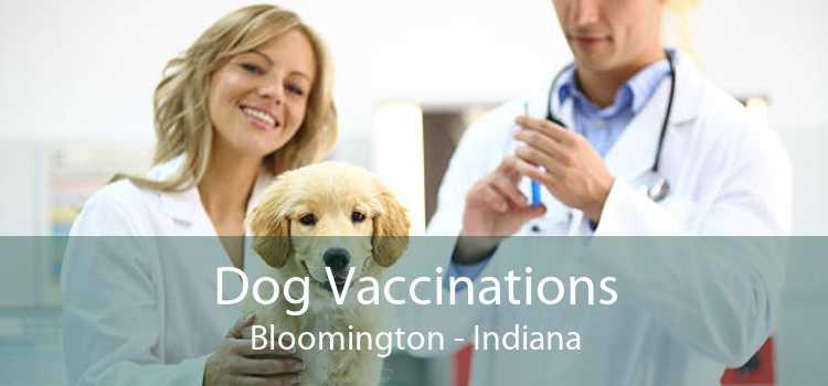 Dog Vaccinations Bloomington - Indiana