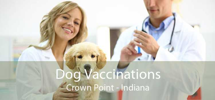 Dog Vaccinations Crown Point - Indiana