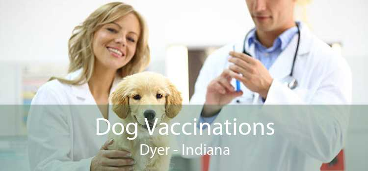 Dog Vaccinations Dyer - Indiana