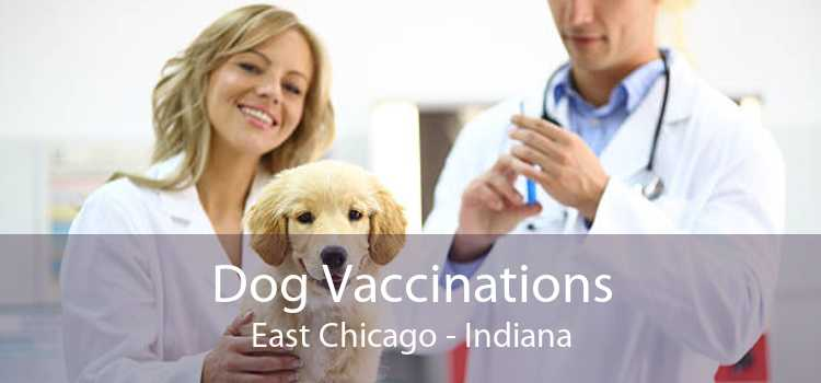 Dog Vaccinations East Chicago - Indiana