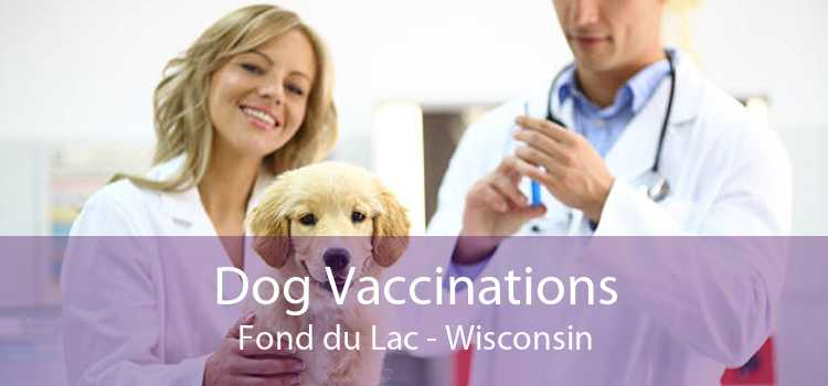 Dog Vaccinations Fond du Lac - Wisconsin