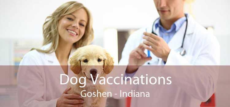 Dog Vaccinations Goshen - Indiana