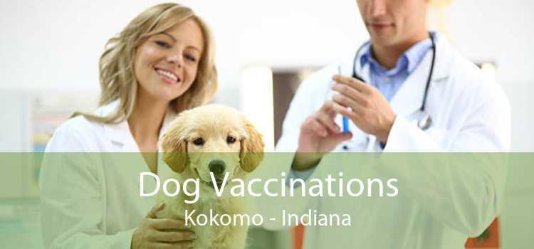 Dog Vaccinations Kokomo - Indiana