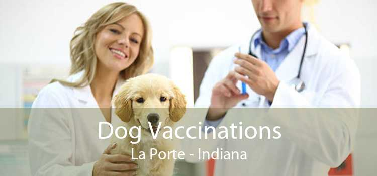 Dog Vaccinations La Porte - Indiana