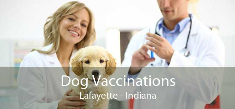 Dog Vaccinations Lafayette - Indiana