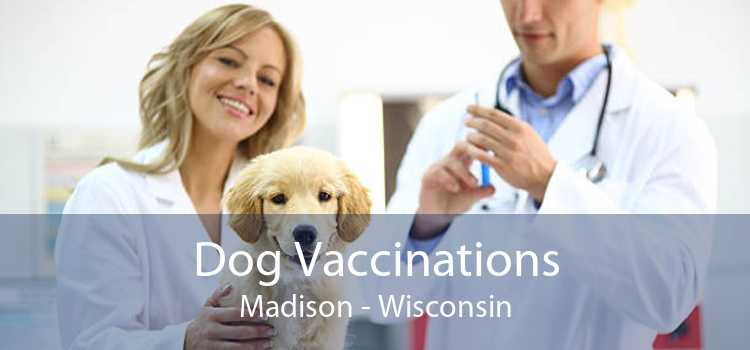 Dog Vaccinations Madison - Wisconsin