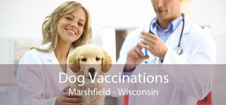 Dog Vaccinations Marshfield - Wisconsin
