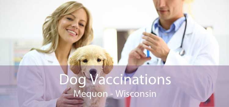 Dog Vaccinations Mequon - Wisconsin