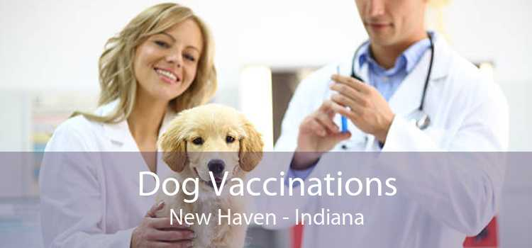 Dog Vaccinations New Haven - Indiana
