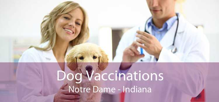 Dog Vaccinations Notre Dame - Indiana