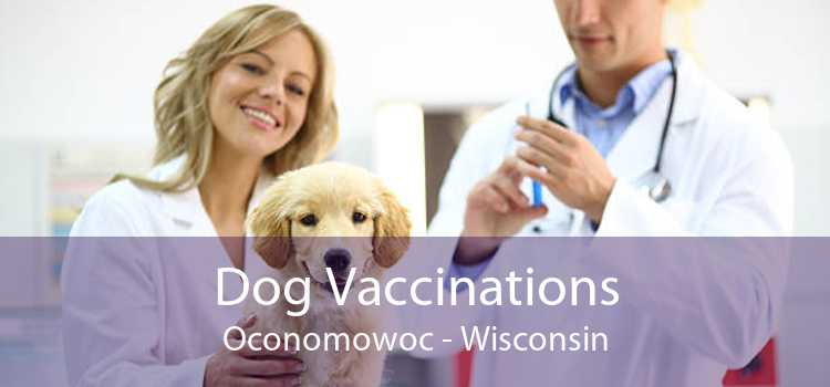 Dog Vaccinations Oconomowoc - Wisconsin