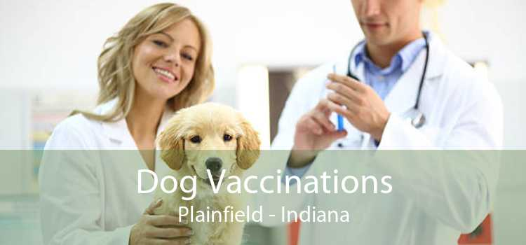 Dog Vaccinations Plainfield - Indiana