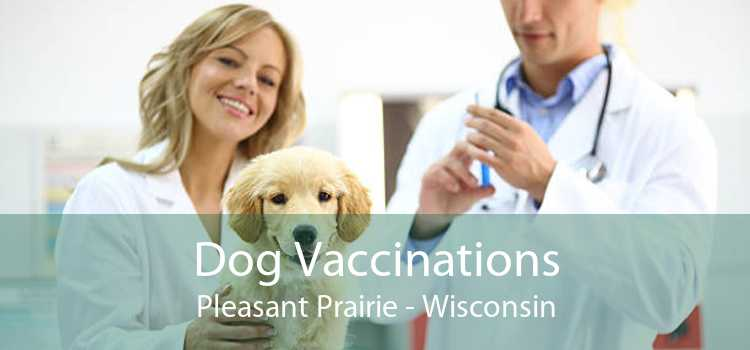 Dog Vaccinations Pleasant Prairie - Wisconsin