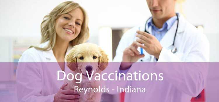 Dog Vaccinations Reynolds - Indiana