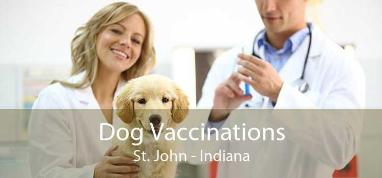 Dog Vaccinations St. John - Indiana