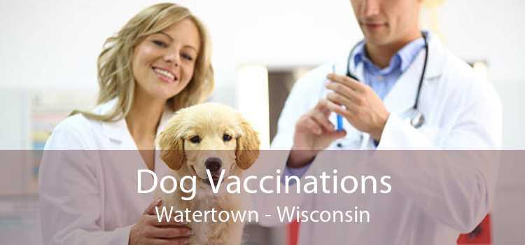 Dog Vaccinations Watertown - Wisconsin