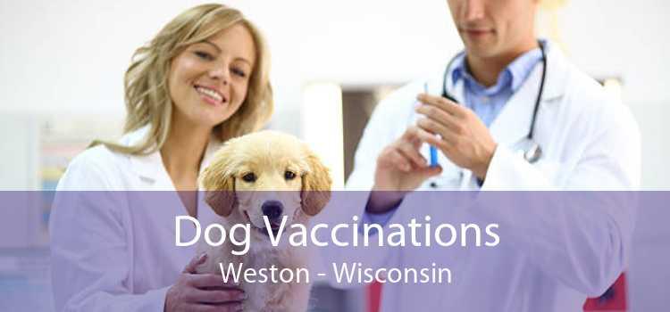 Dog Vaccinations Weston - Wisconsin