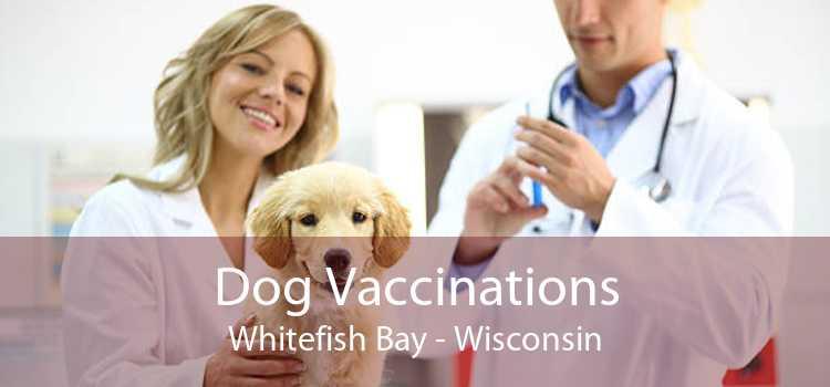 Dog Vaccinations Whitefish Bay - Wisconsin
