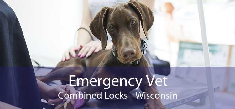 Emergency Vet Combined Locks - Wisconsin