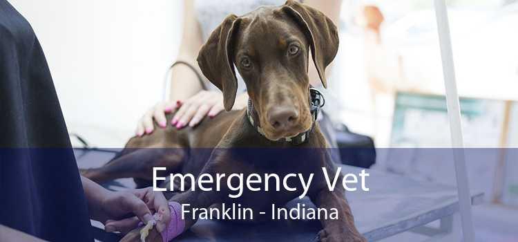 Emergency Vet Franklin - Indiana