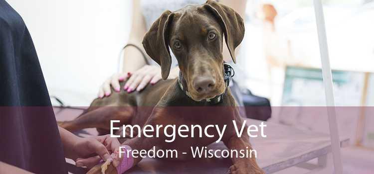 Emergency Vet Freedom - Wisconsin