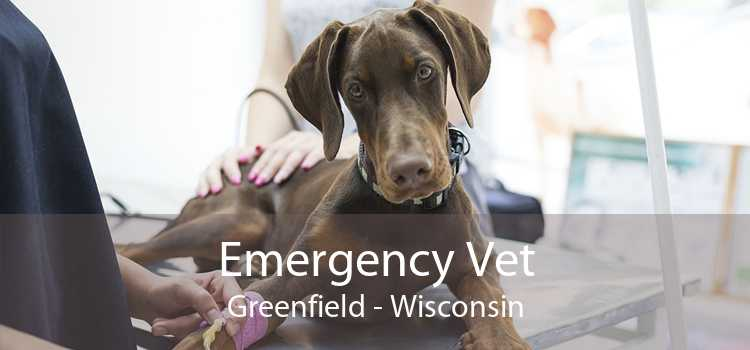 Emergency Vet Greenfield - Wisconsin